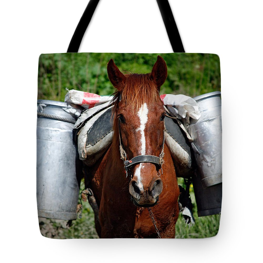 Countryside Tote Bag featuring the photograph Work Horse At The Azores by Gaspar Avila