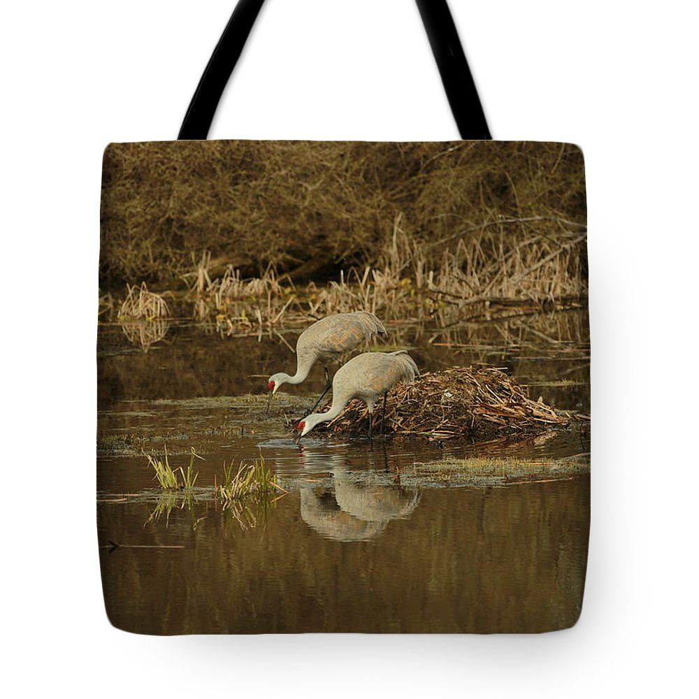 Cranes Tote Bag featuring the photograph Working Together by Melvin Busch