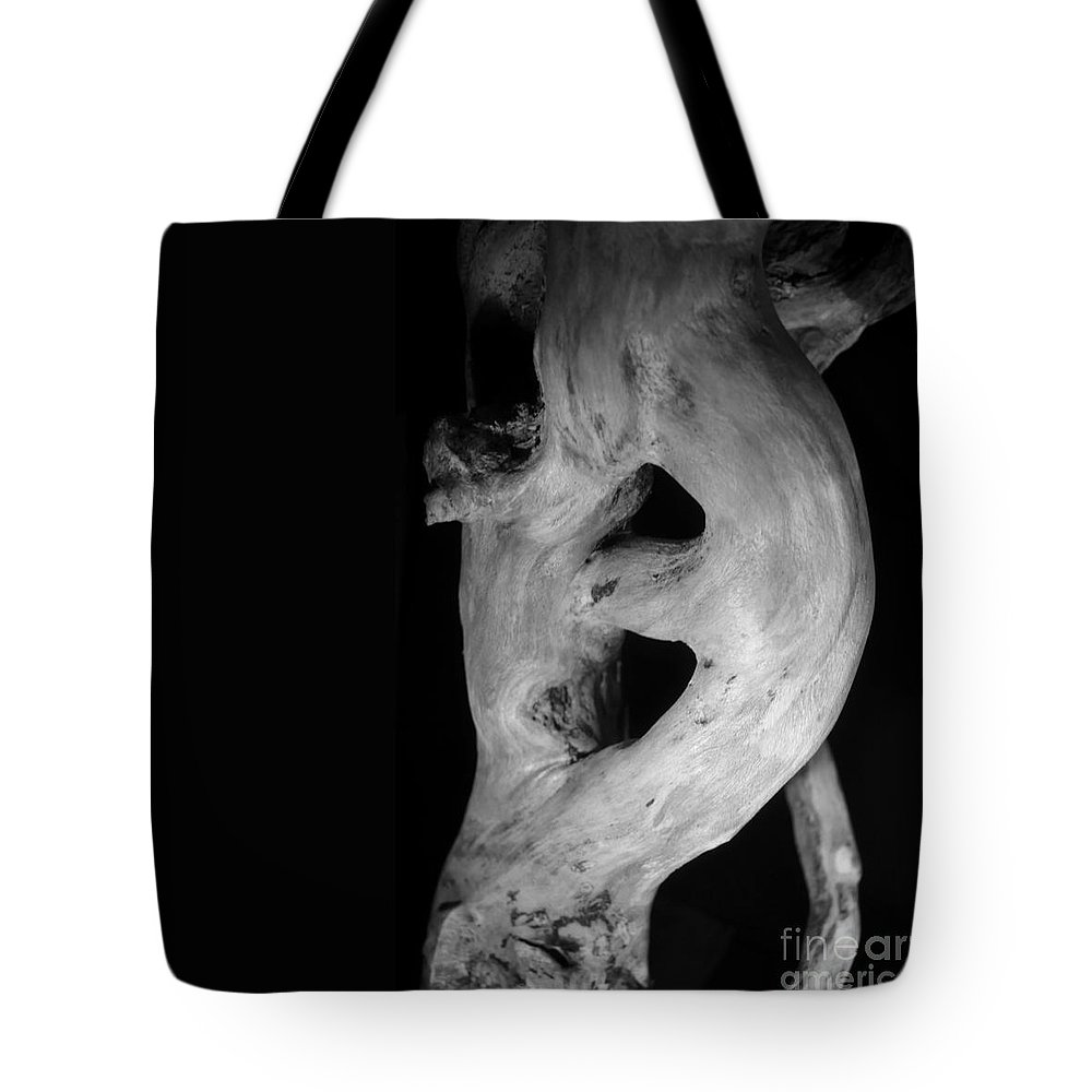 (c) Paul Davenport Tote Bag featuring the photograph Wudu 1 Xxxviii by Paul Davenport
