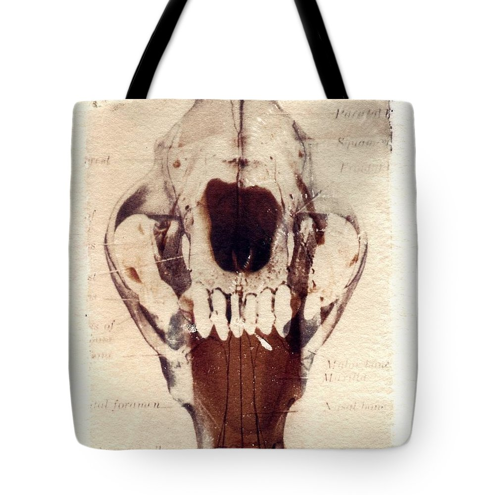 Polaroid Tote Bag featuring the photograph X Ray Terrestrial by Jane Linders