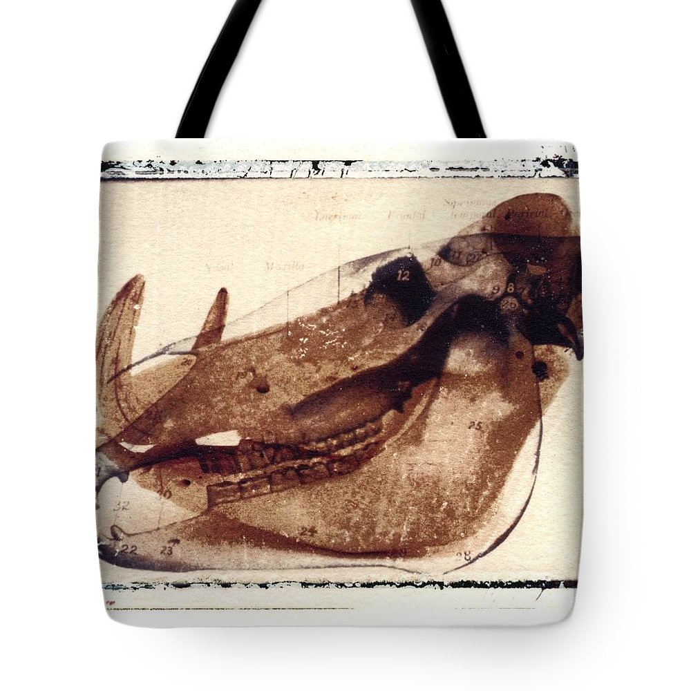 Polaroid Transfer Tote Bag featuring the photograph X Ray Terrestrial No. 6 by Jane Linders