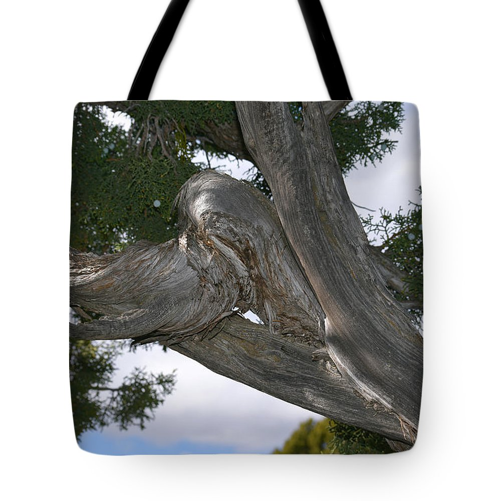 Pat Turner Tote Bag featuring the photograph Y Knot by Pat Turner