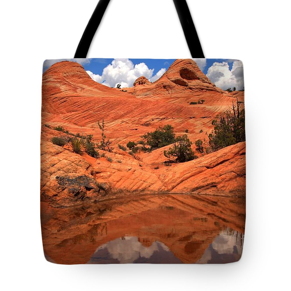 Yant Flat Reflections Tote Bag featuring the photograph Yant Flat Canyon Reflections by Adam Jewell