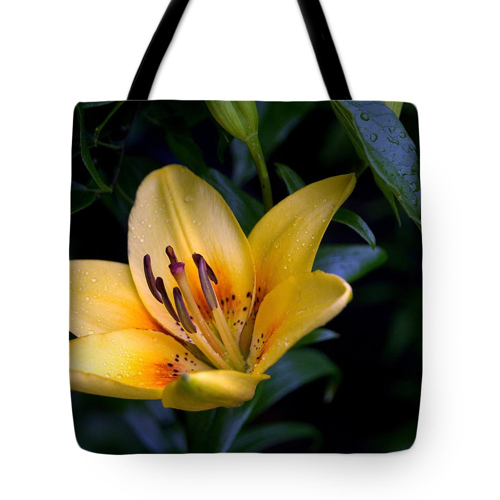 Yellow Tote Bag featuring the photograph Yellow And Green No. 2 by Edward Dunncan