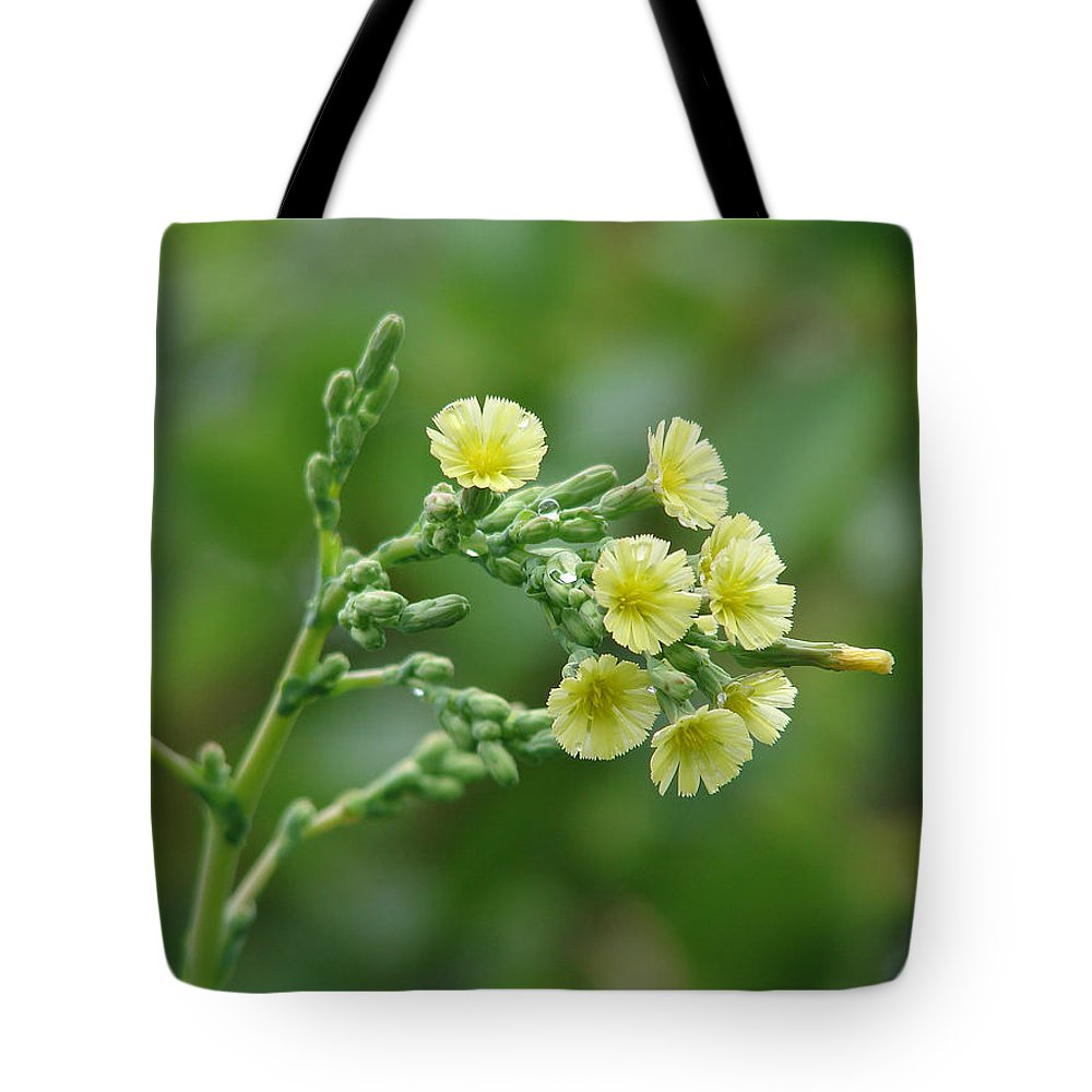 Green Yellow Flower Tote Bag featuring the photograph Yellow And Small by Luciana Seymour