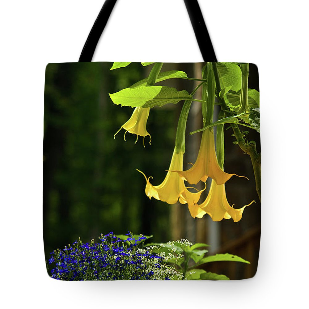 Yellow Tote Bag featuring the photograph Yellow Angel Trumpet by Douglas Barnett