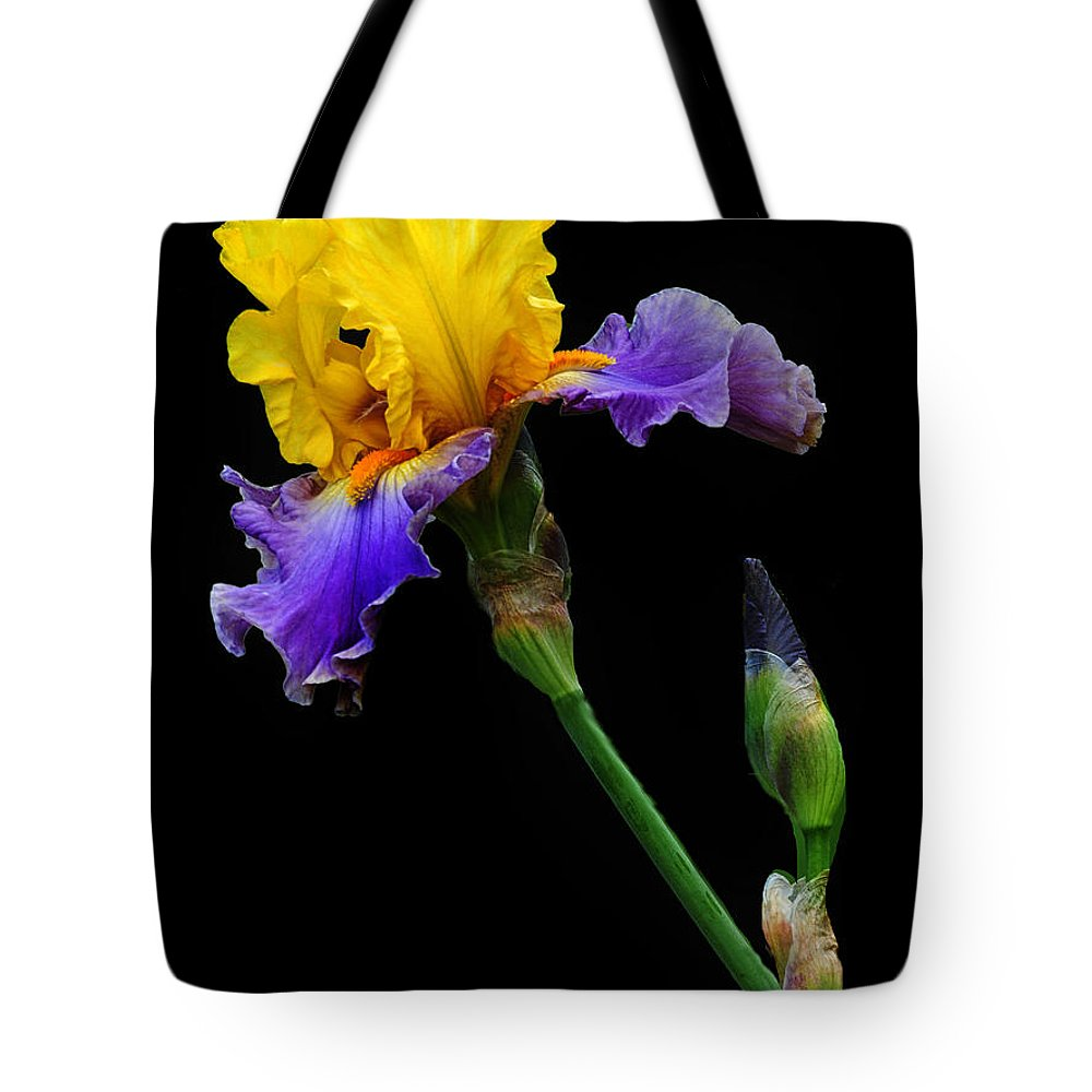 Iris Tote Bag featuring the photograph Yellow Beauty by Dave Mills
