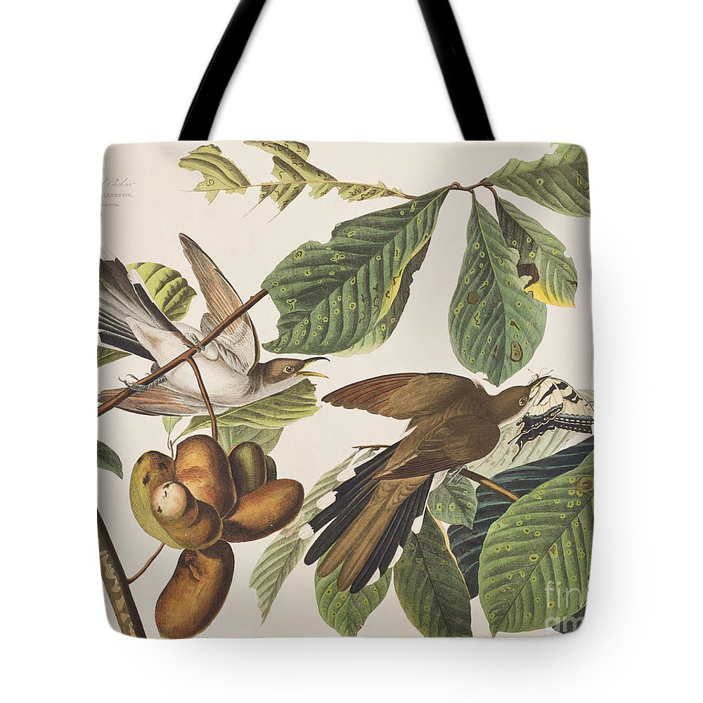 Cuckoo Tote Bag featuring the painting Yellow Billed Cuckoo by John James Audubon