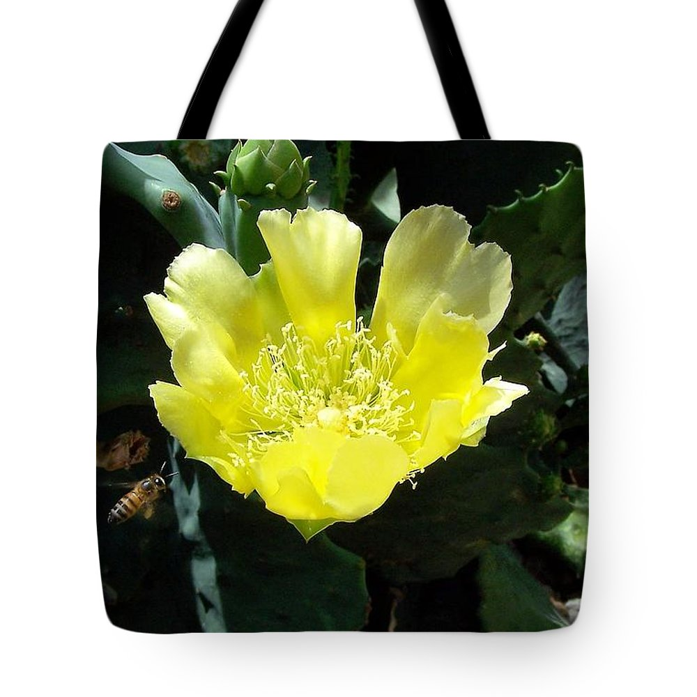 Cactus Tote Bag featuring the photograph Yellow Bonnet, Cactus by Sandra Reeves