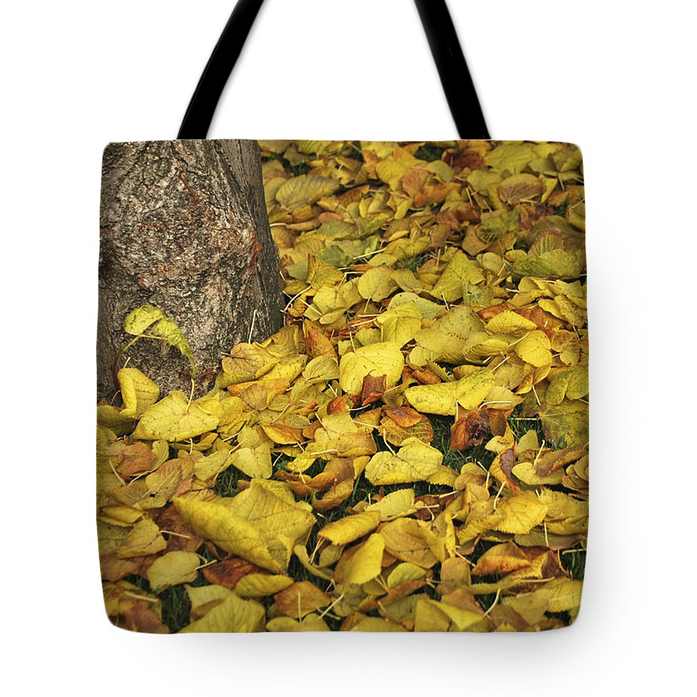 Photograph Tote Bag featuring the photograph Yellow Carpet by Ignacio Leal Orozco