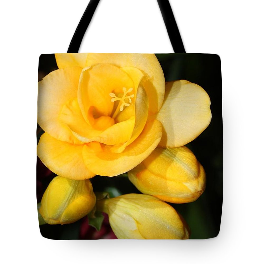 Easter Tote Bag featuring the photograph Yellow Crocus Closeup by Carol Groenen