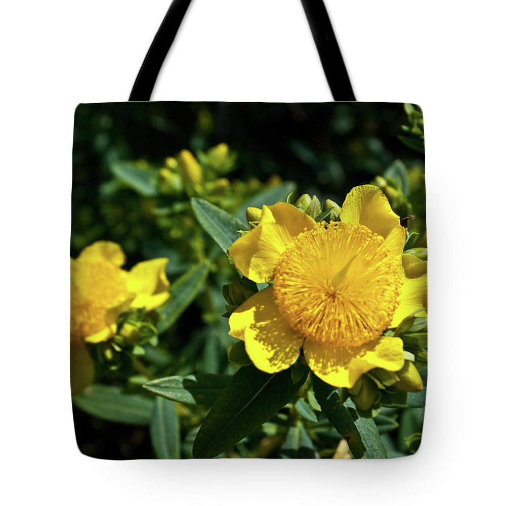 Regal Tote Bag featuring the photograph Yellow Crown Flower by Douglas Barnett