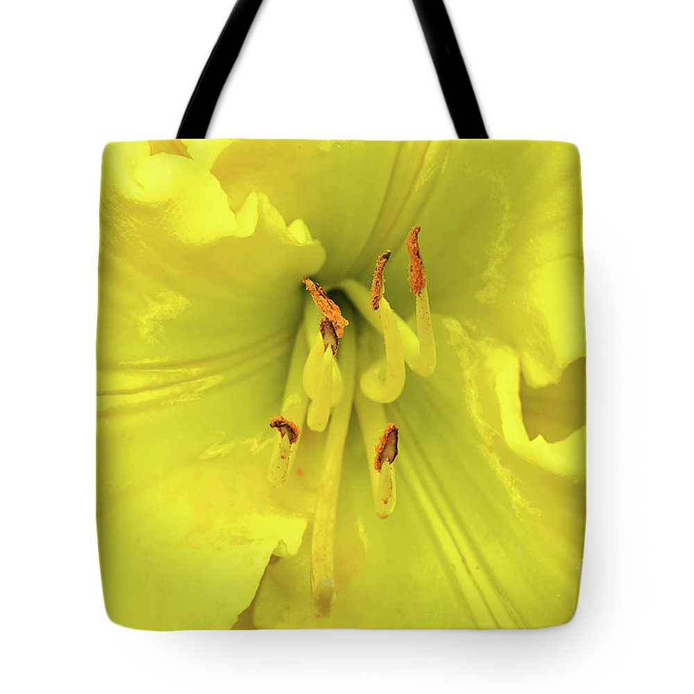 Day Lily Tote Bag featuring the photograph Yellow Daylily by Regina Geoghan