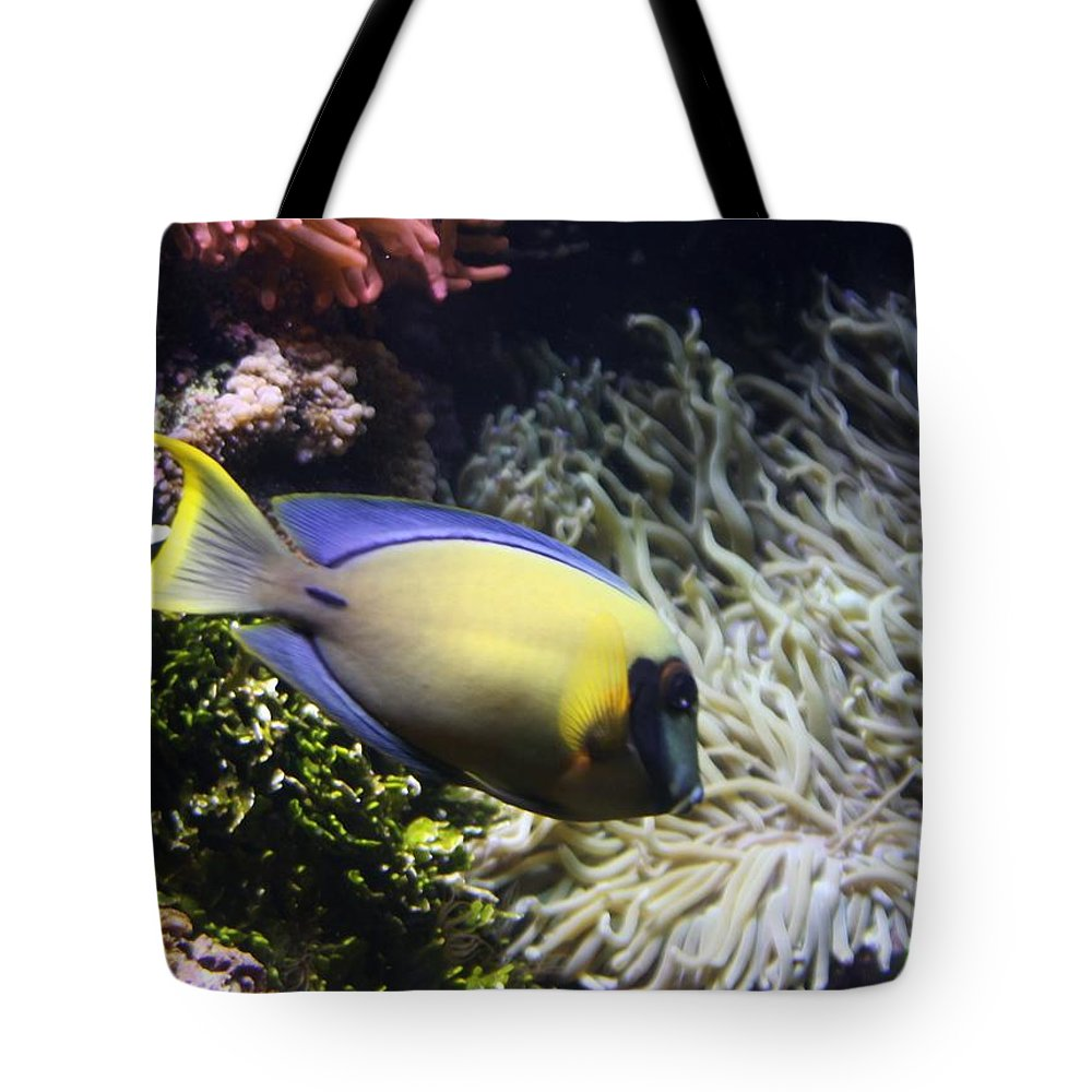 Fish Tote Bag featuring the photograph Yellow Fish by Kenna Westerman