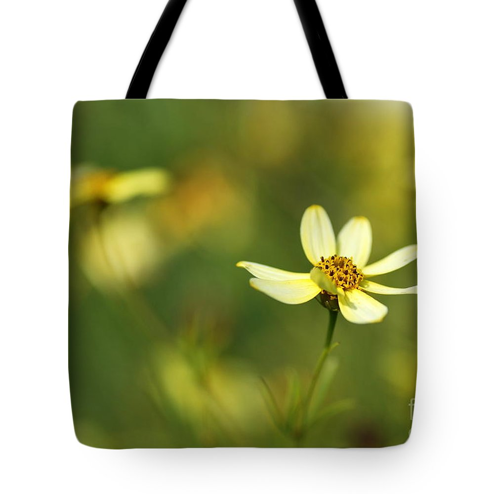 Macro Tote Bag featuring the photograph Yellow Flower by Catherine Lau