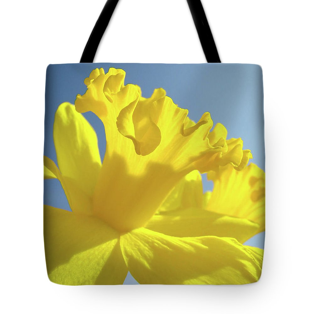 Flower Tote Bag featuring the photograph Yellow Flower Floral Daffodils Art Prints Spring Blue Sky Baslee Troutman by Baslee Troutman
