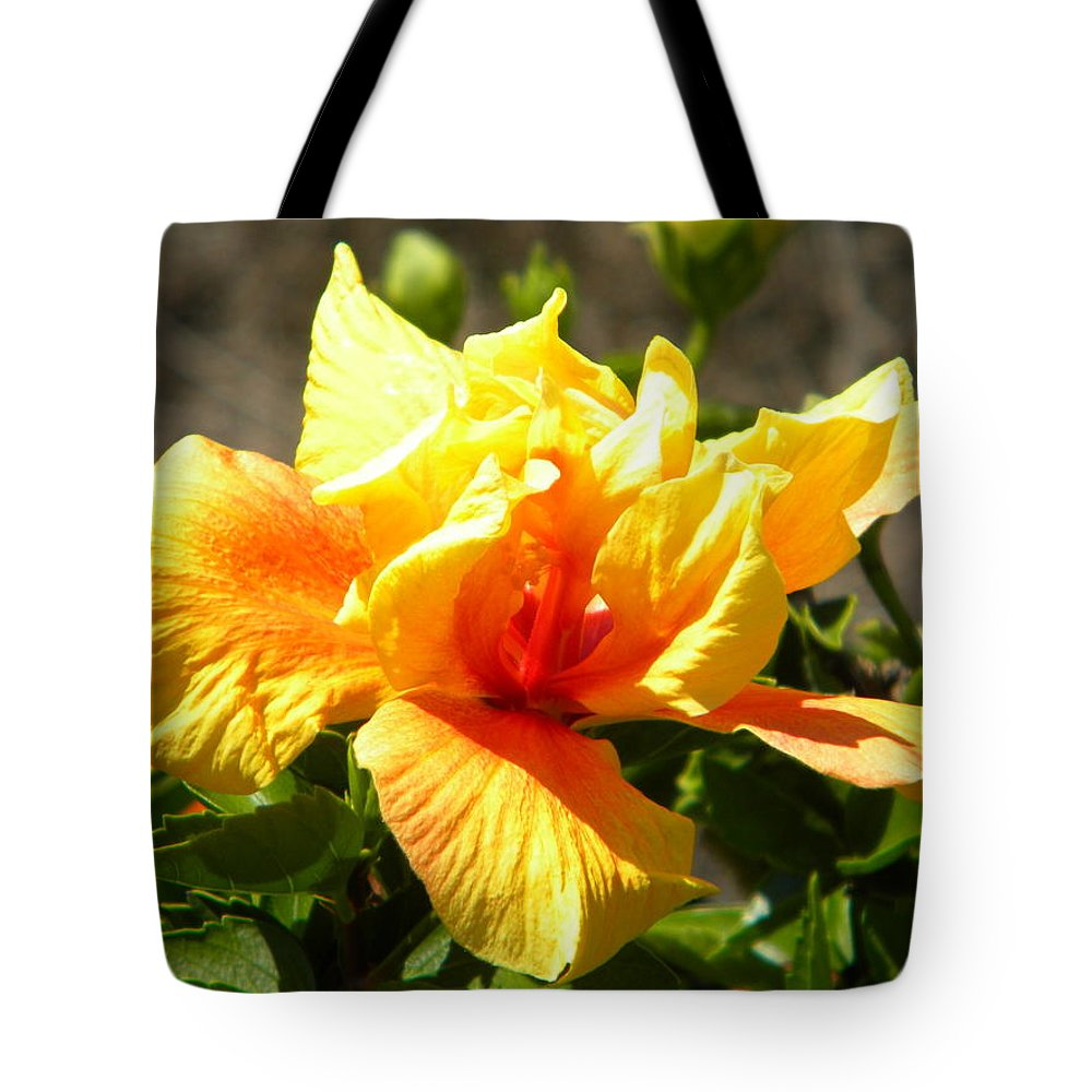 Yellow And Orange Tote Bag featuring the photograph Yellow Flower by Joan Gal-Peck