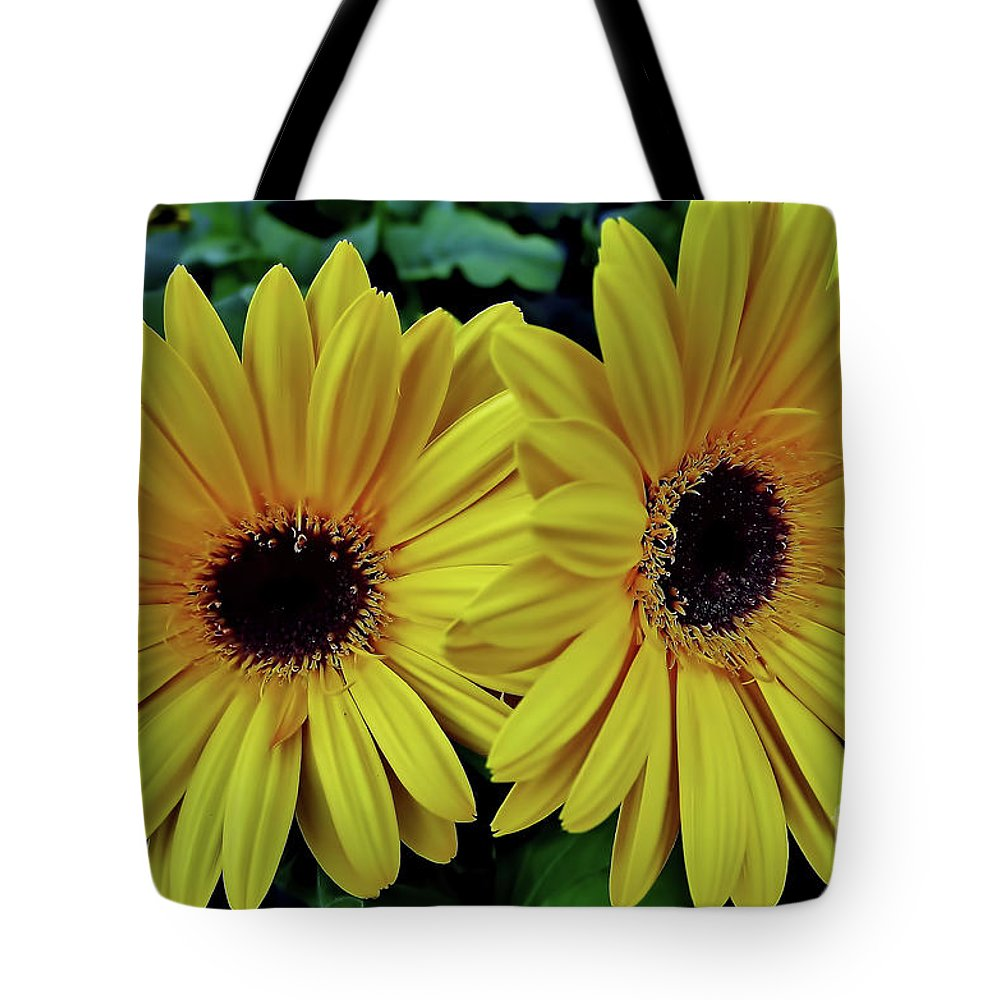 Daisy Tote Bag featuring the photograph Yellow Gerberas by D Hackett