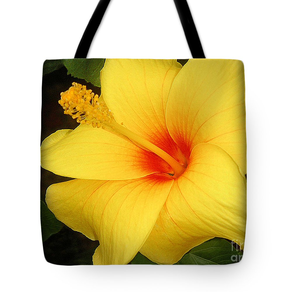 Nature Tote Bag featuring the photograph Yellow Hibiscus by Lucyna A M Green