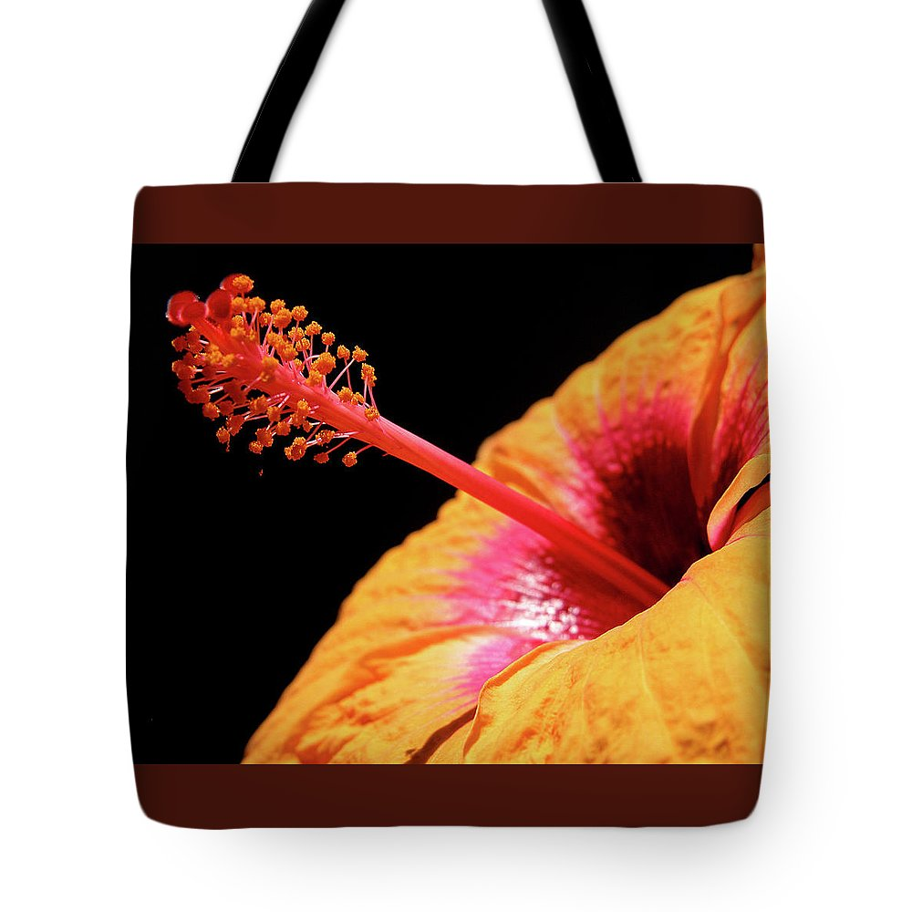 Hibiscus Tote Bag featuring the photograph Yellow Hibiscus by Marie Hicks