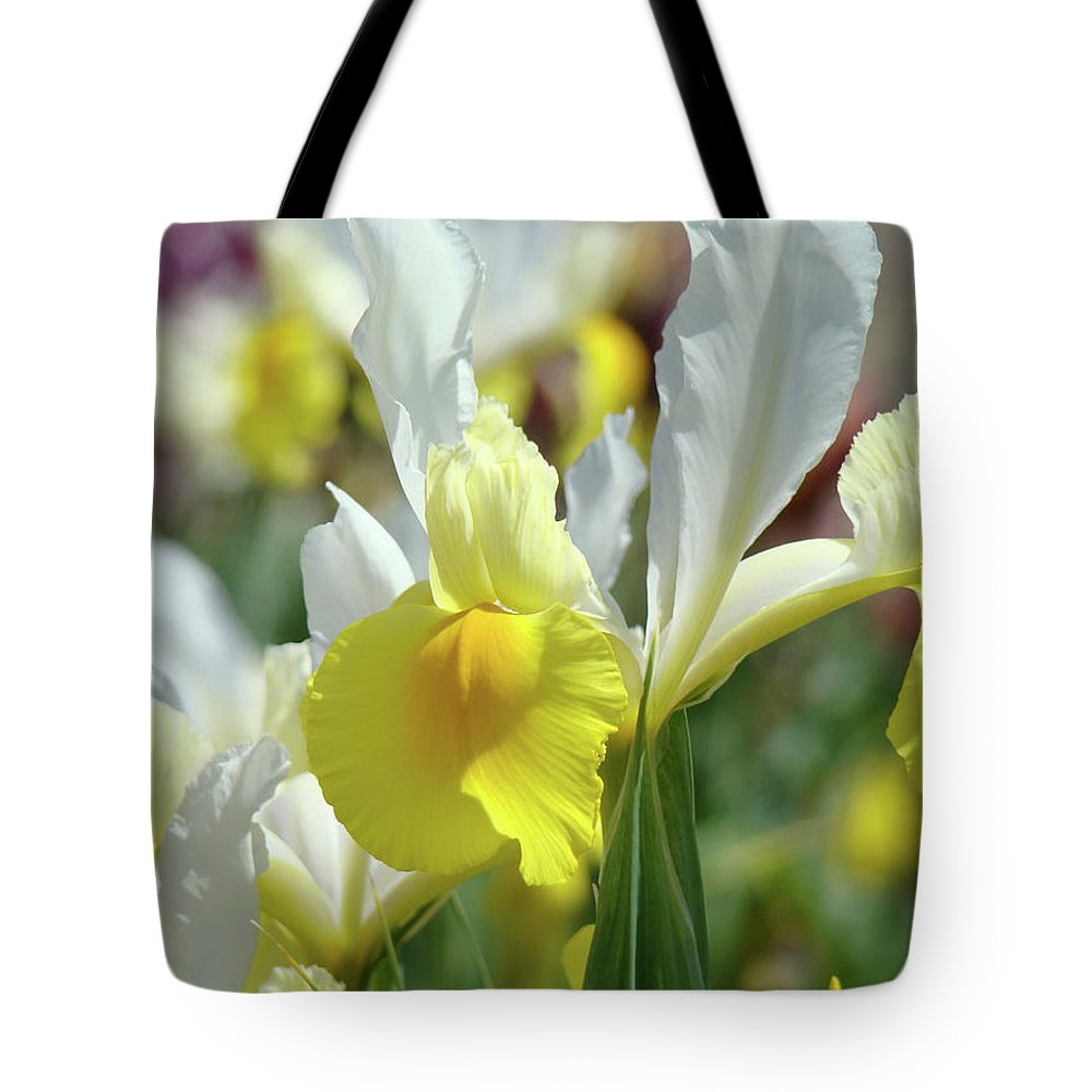 �irises Artwork� Tote Bag featuring the photograph Yellow Irises Flowers Iris Flower Art Print Floral Botanical Art Baslee Troutman by Baslee Troutman