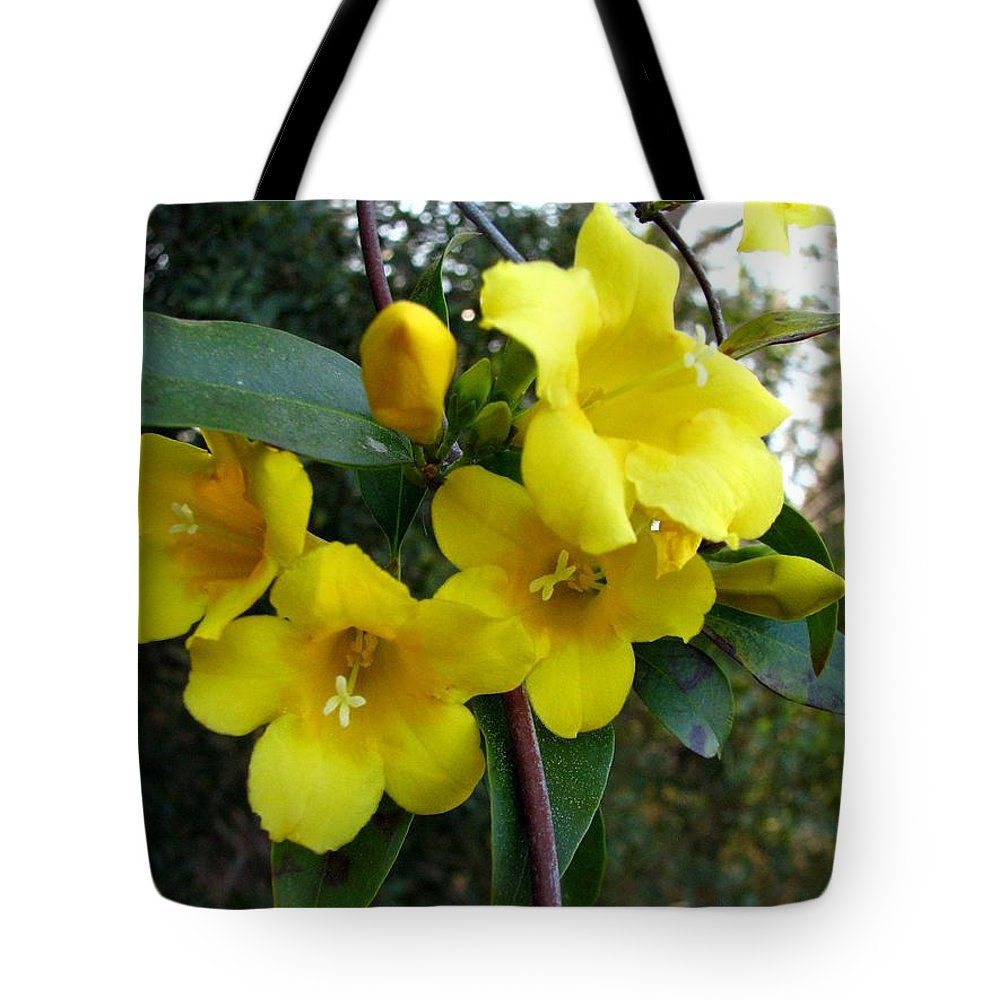 Yellow Jasmine Tote Bag featuring the photograph Yellow Jasmine by J M Farris Photography