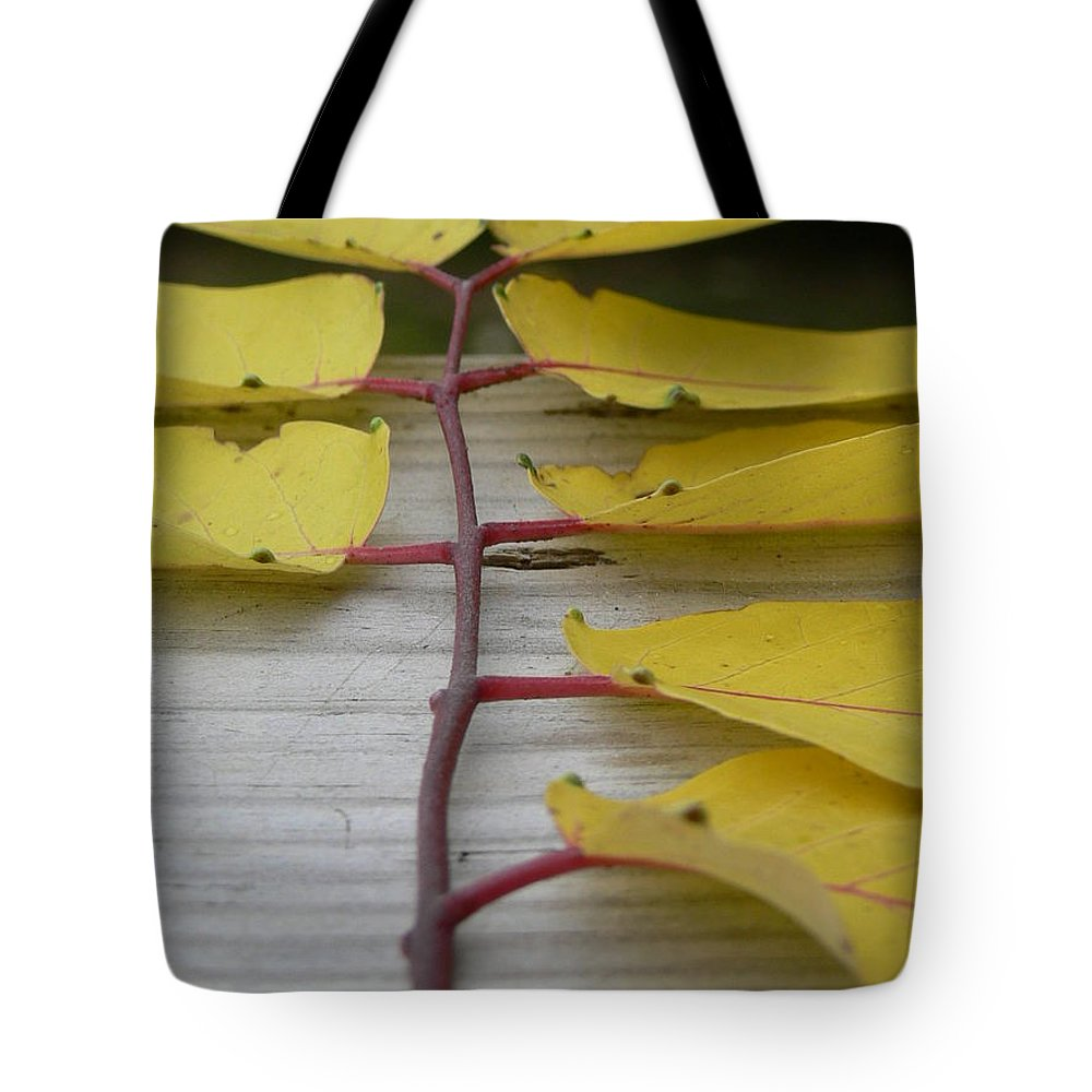 Yellow Leaves Tote Bag featuring the photograph Yellow Ladder by Serina Wells