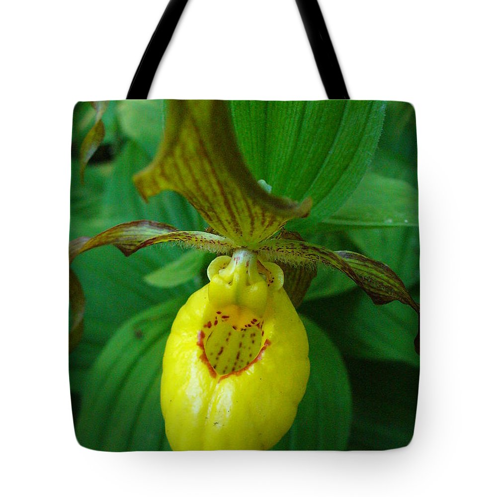 Yellow Lady Slipper Tote Bag featuring the photograph Yellow Lady's Slipper by Peggy King