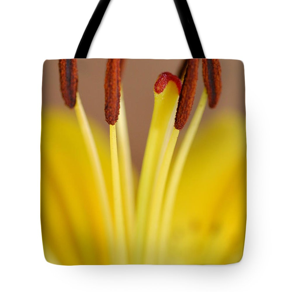 Flower Tote Bag featuring the photograph Yellow Lily Reach 1 by Amy Fose