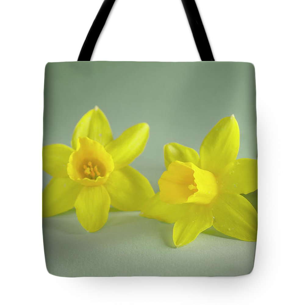 Yellow Mini Narcissus Tote Bag featuring the photograph Yellow Mini Narcissus by Iris Richardson