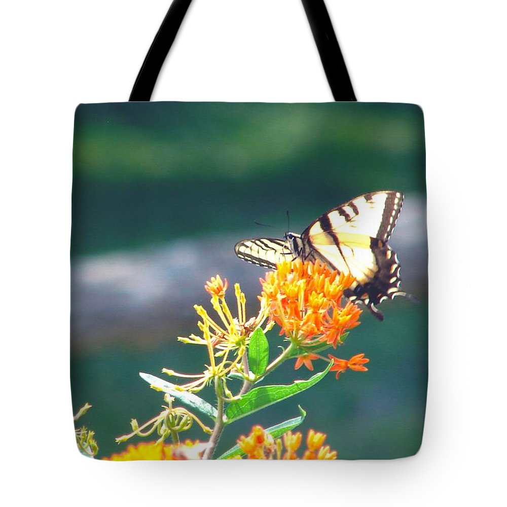 Butterfly Tote Bag featuring the photograph Yellow Monarch Butterfly by Penny Neimiller