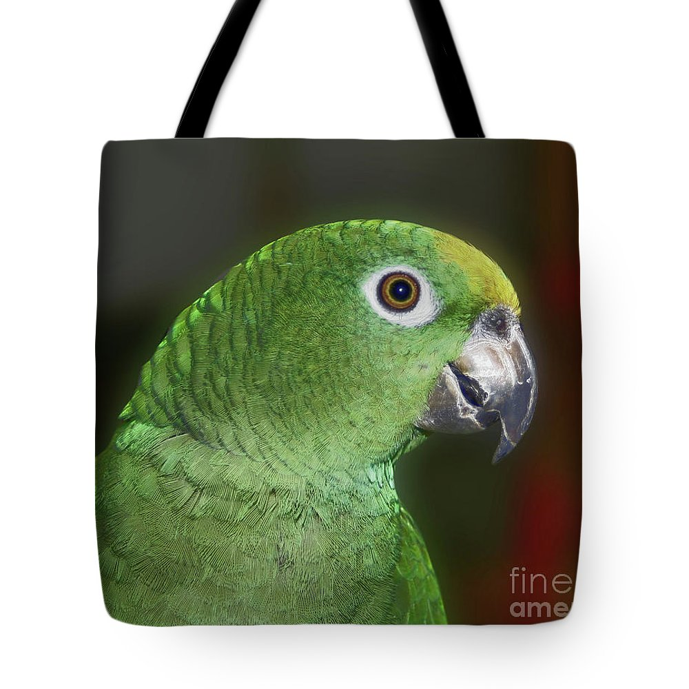 Animal Tote Bag featuring the photograph Yellow Naped Amazon Parrot by Smilin Eyes Treasures
