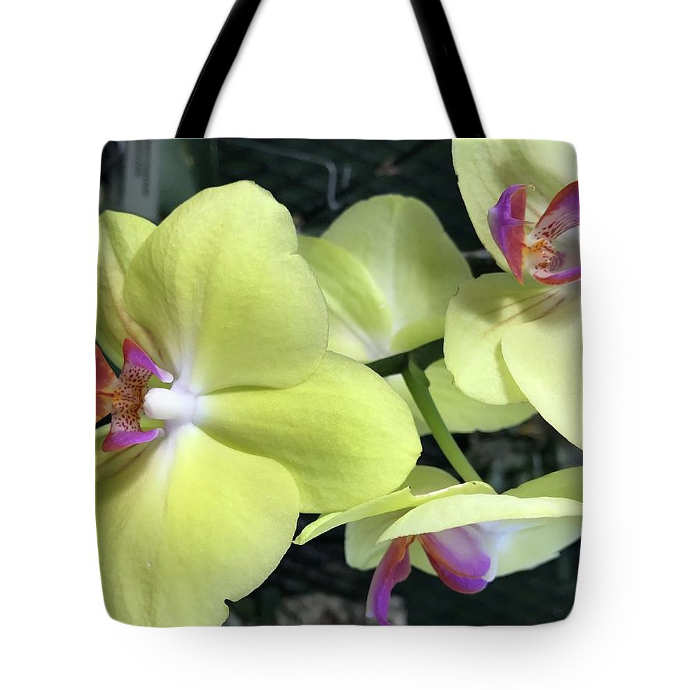 Flowers Tote Bag featuring the photograph Yellow Orchid by Jean Wolfrum