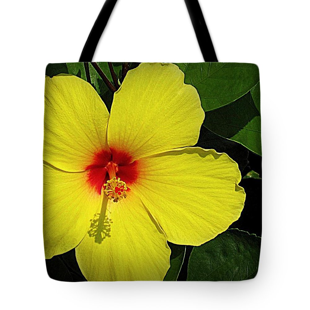 Flowers Tote Bag featuring the digital art Yellow Red Hibiscus by Bonita Brandt