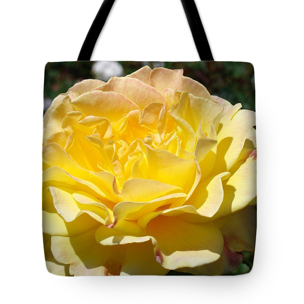 Rose Tote Bag featuring the photograph Yellow Rose Sunlit Summer Roses Flowers Art Prints Baslee Troutman by Baslee Troutman