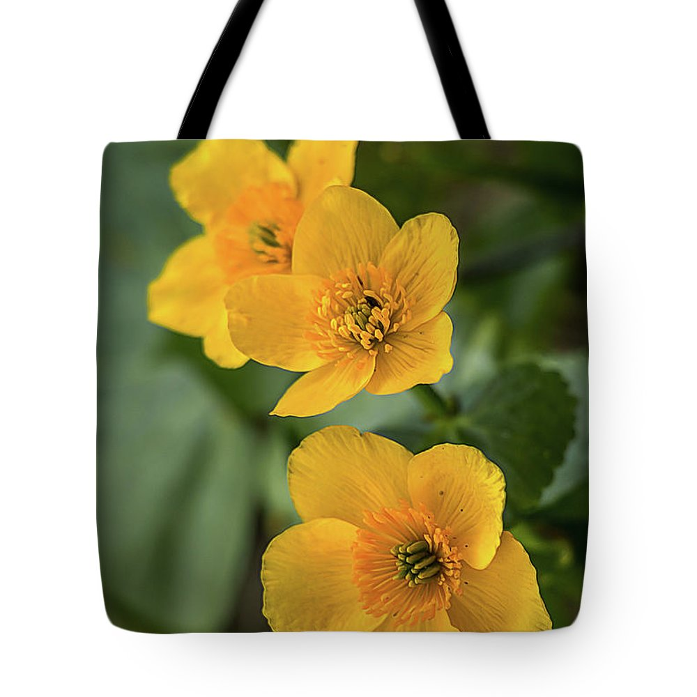 Flower Tote Bag featuring the photograph Yellow Spring Buttercups Closeup by Alex Konakov