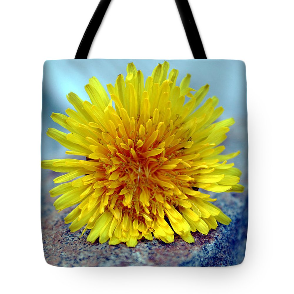 Flower Wild Nature Yellow Rock Blue Spring Macro Close Up Tote Bag featuring the photograph Yellow Spring by Linda Sannuti