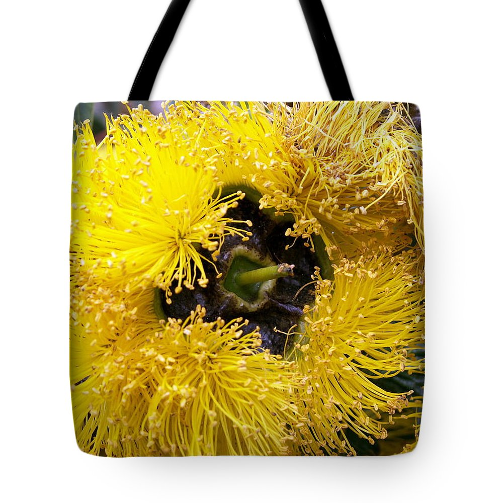 Flower Tote Bag featuring the photograph Yellow Tree Flower by Amy Fose