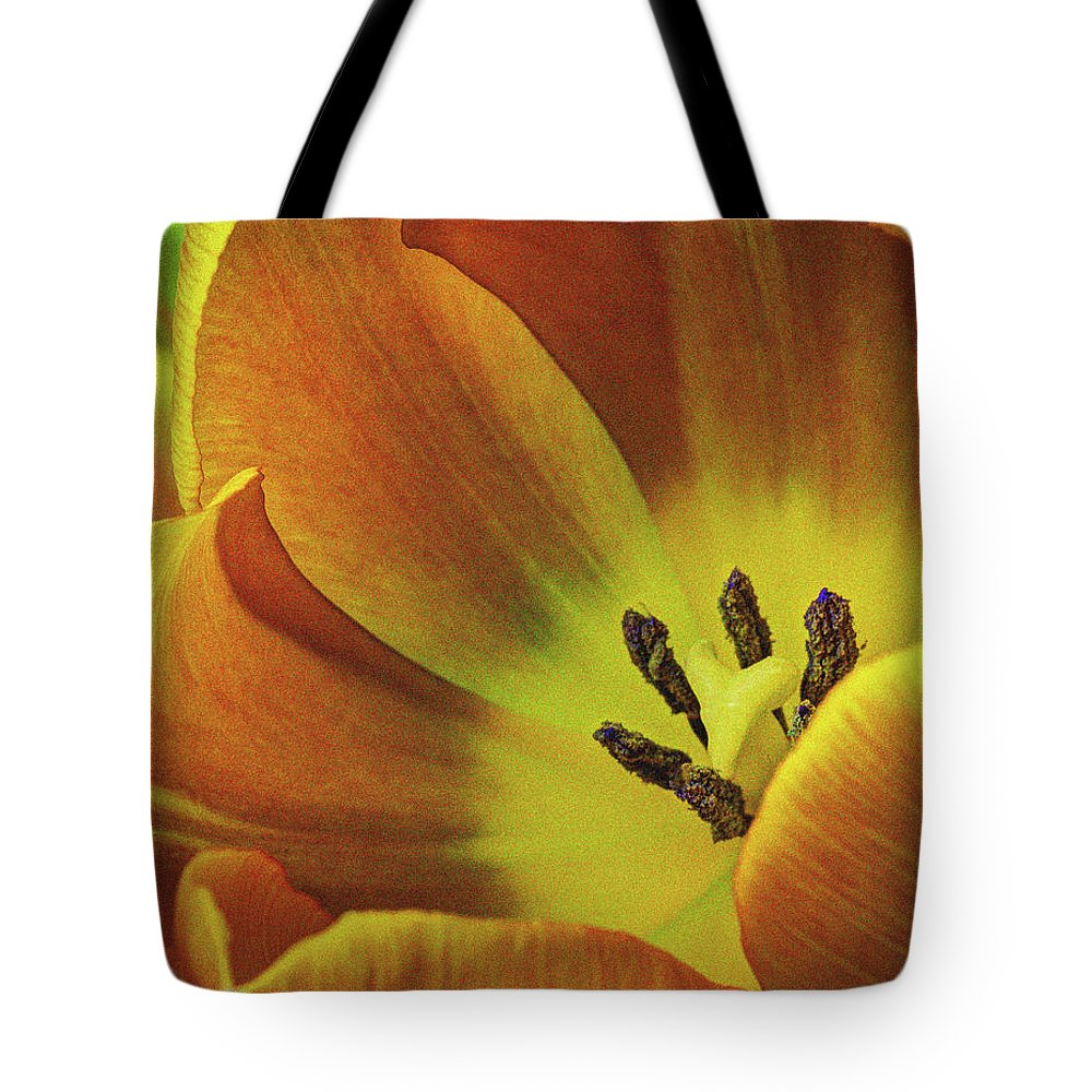 Flowers Tote Bag featuring the photograph Yellow Tulip by Dave Thompsen