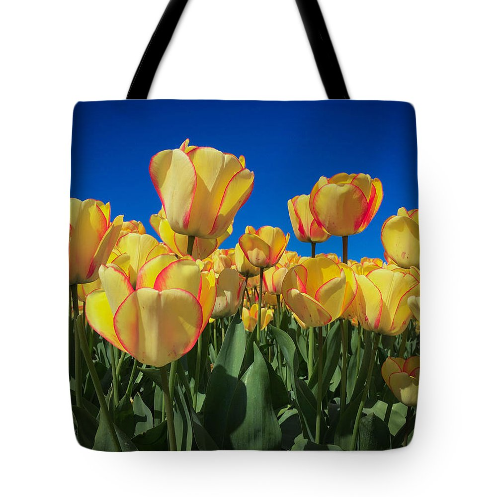 Tulip Tote Bag featuring the digital art Yellow Tulips With An Orange Flare by Mia DeBolt