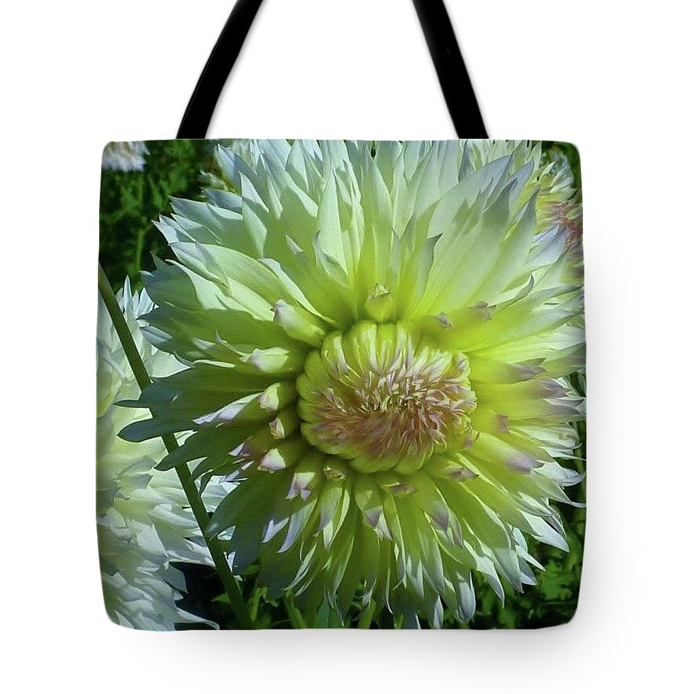 Yellow with white dahlia flower tote bag for sale by susan garren yellow with white tips dahlia flower tote bag featuring the photograph yellow with white dahlia flower izmirmasajfo