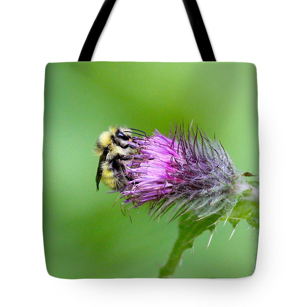 Adventure Tote Bag featuring the photograph Yellowhead Bumblebee by Nicholas Miller