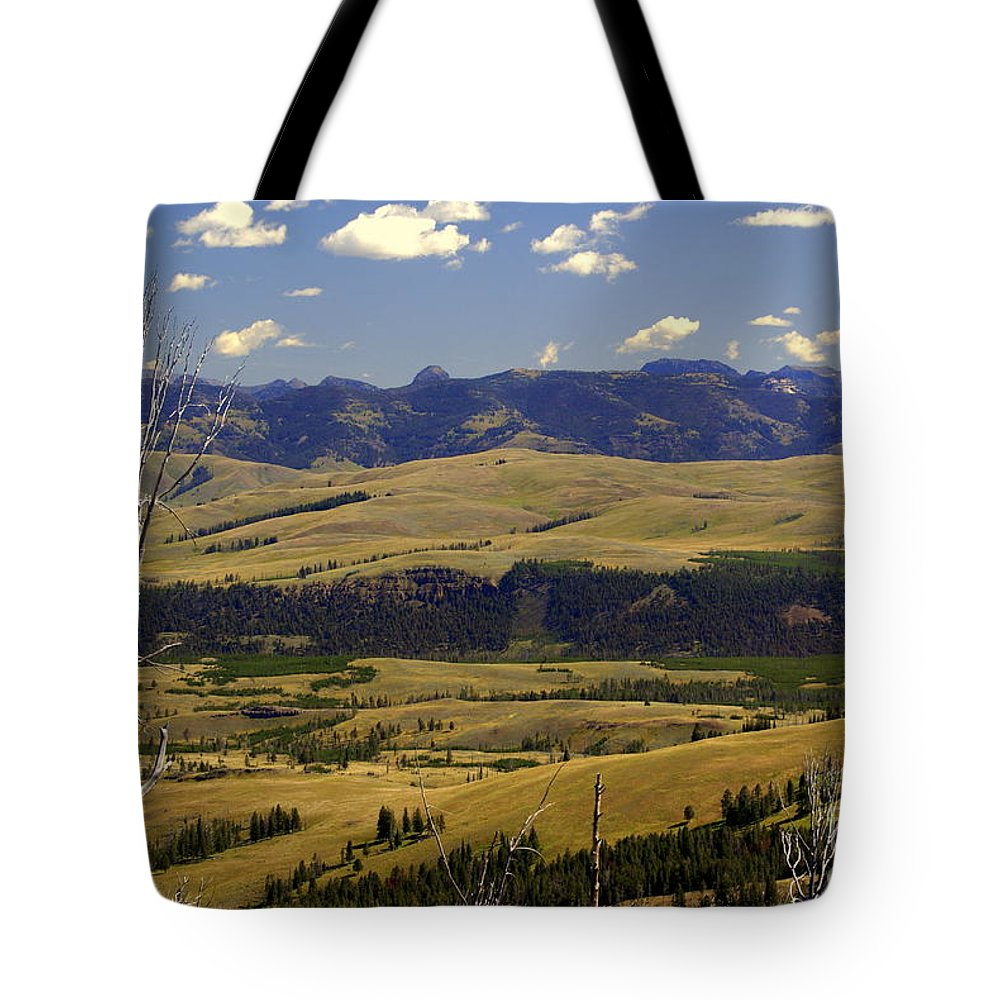 Yellowstone National Park Tote Bag featuring the photograph Yellowstone Vista 2 by Marty Koch