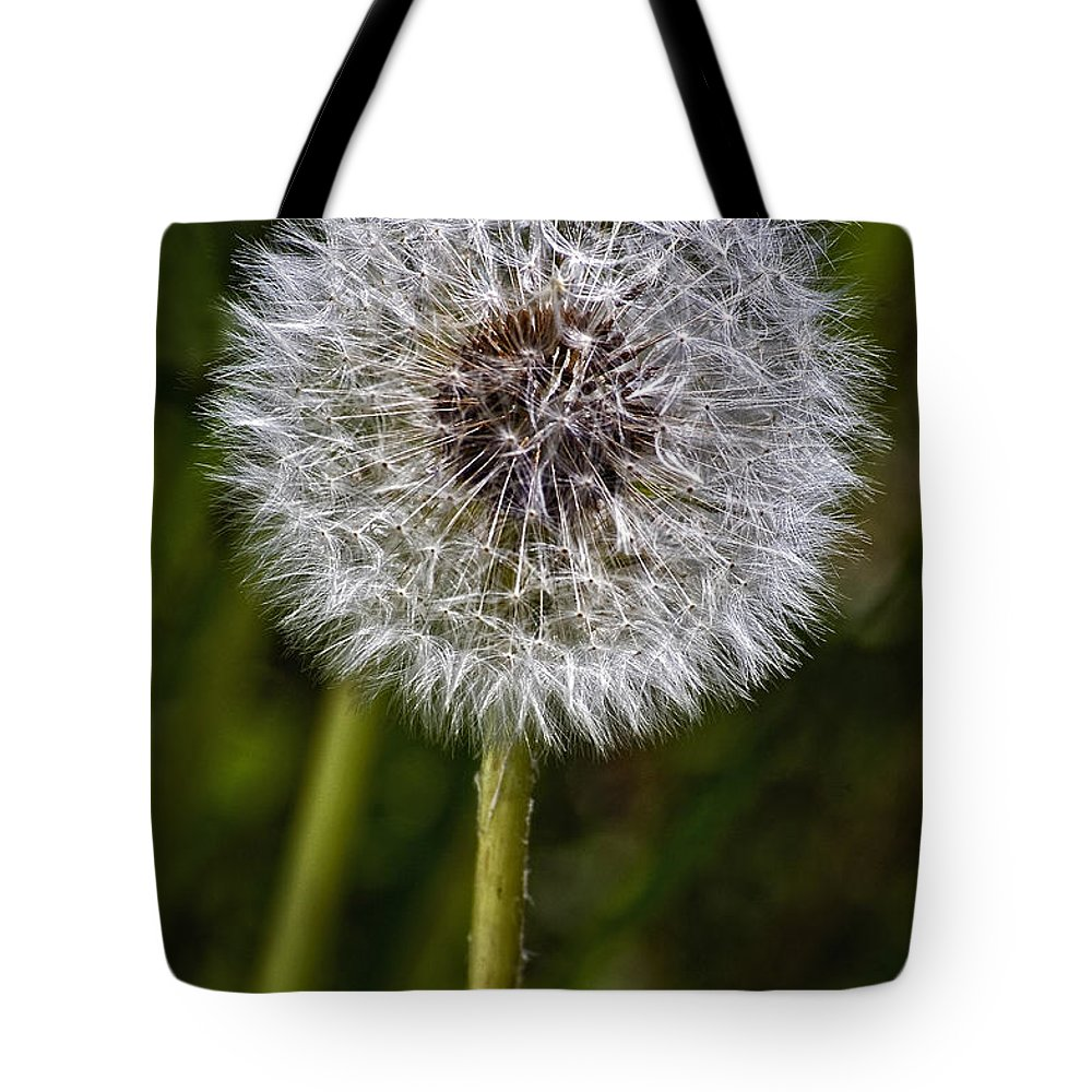 Floral Tote Bag featuring the photograph Yippee by Steve Harrington