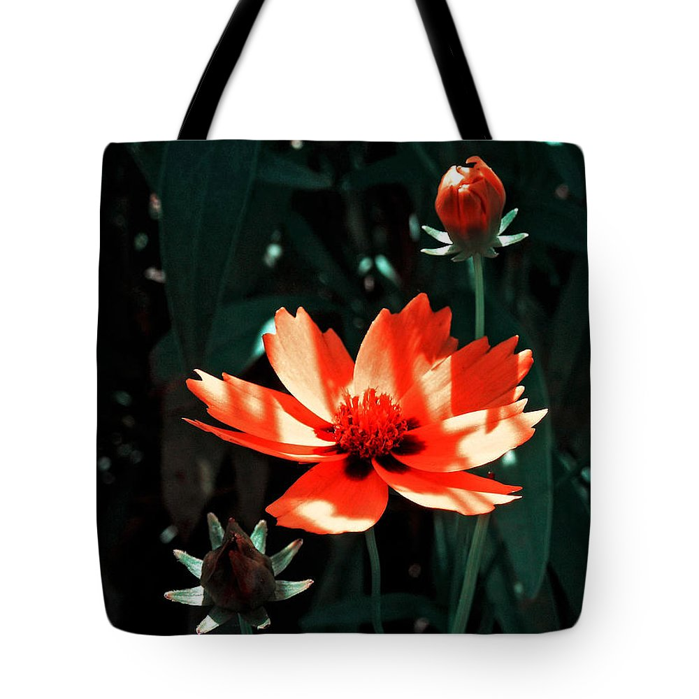 Garden Tote Bag featuring the photograph You Are So Beautiful ... by Juergen Weiss