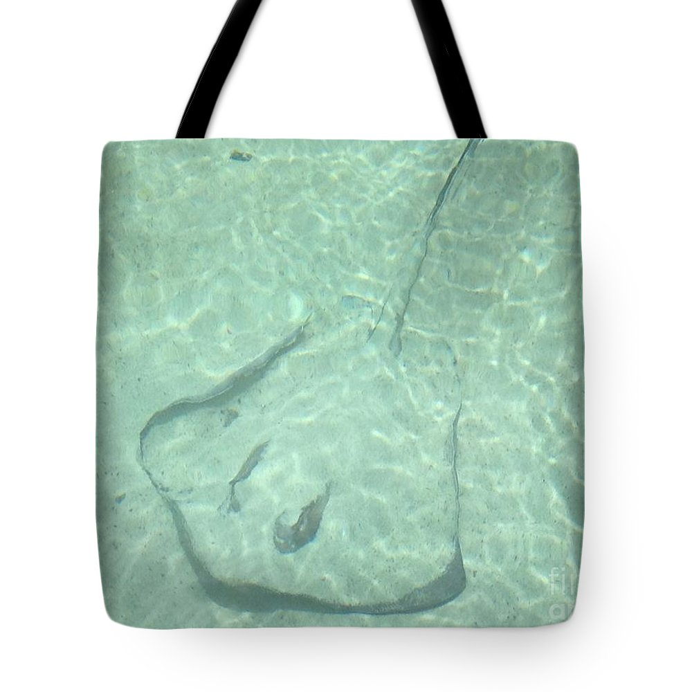St. Thomas Tote Bag featuring the photograph You Can't See Me by Gina Sullivan