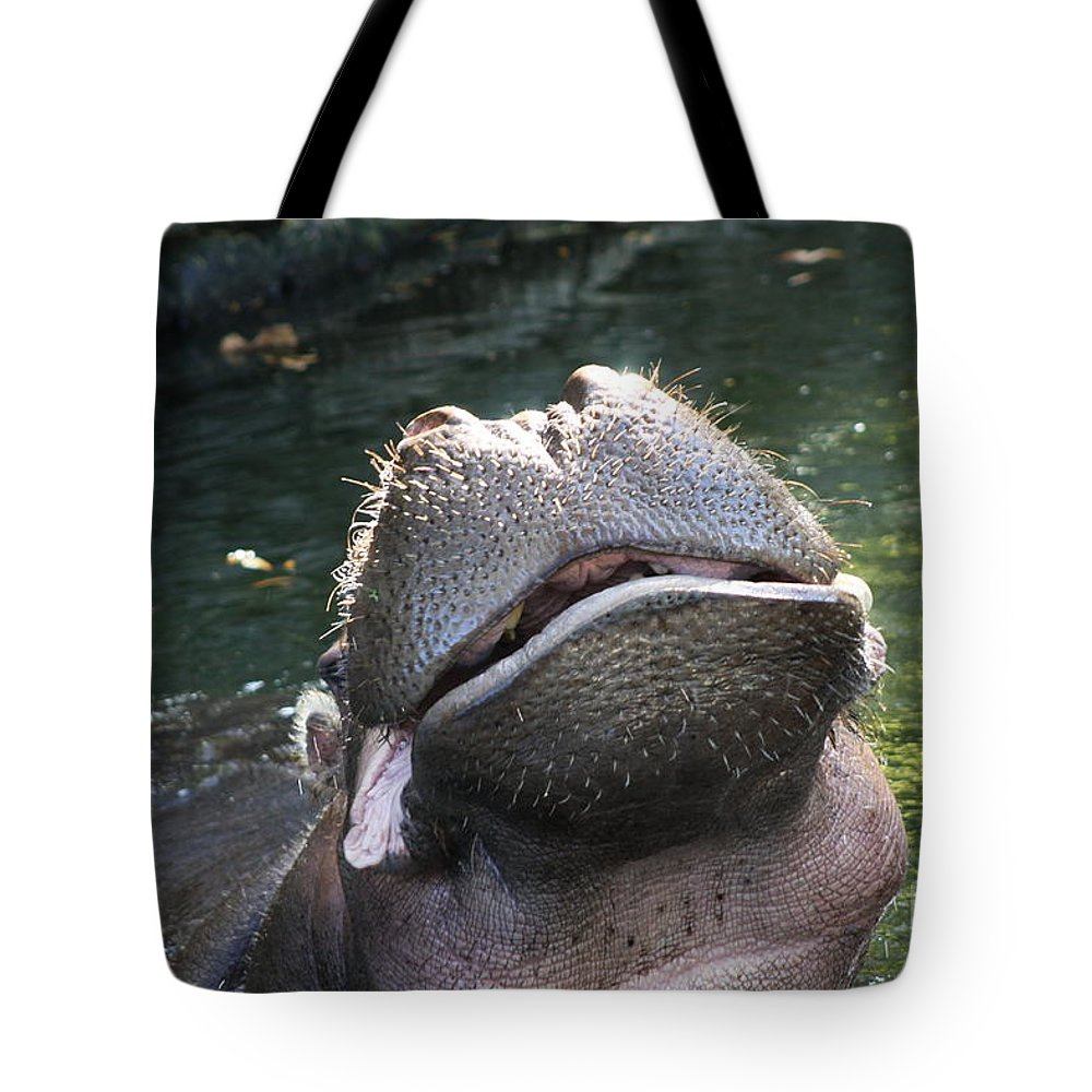 Hippo Tote Bag featuring the photograph You Make Me Laugh by Christiane Schulze Art And Photography