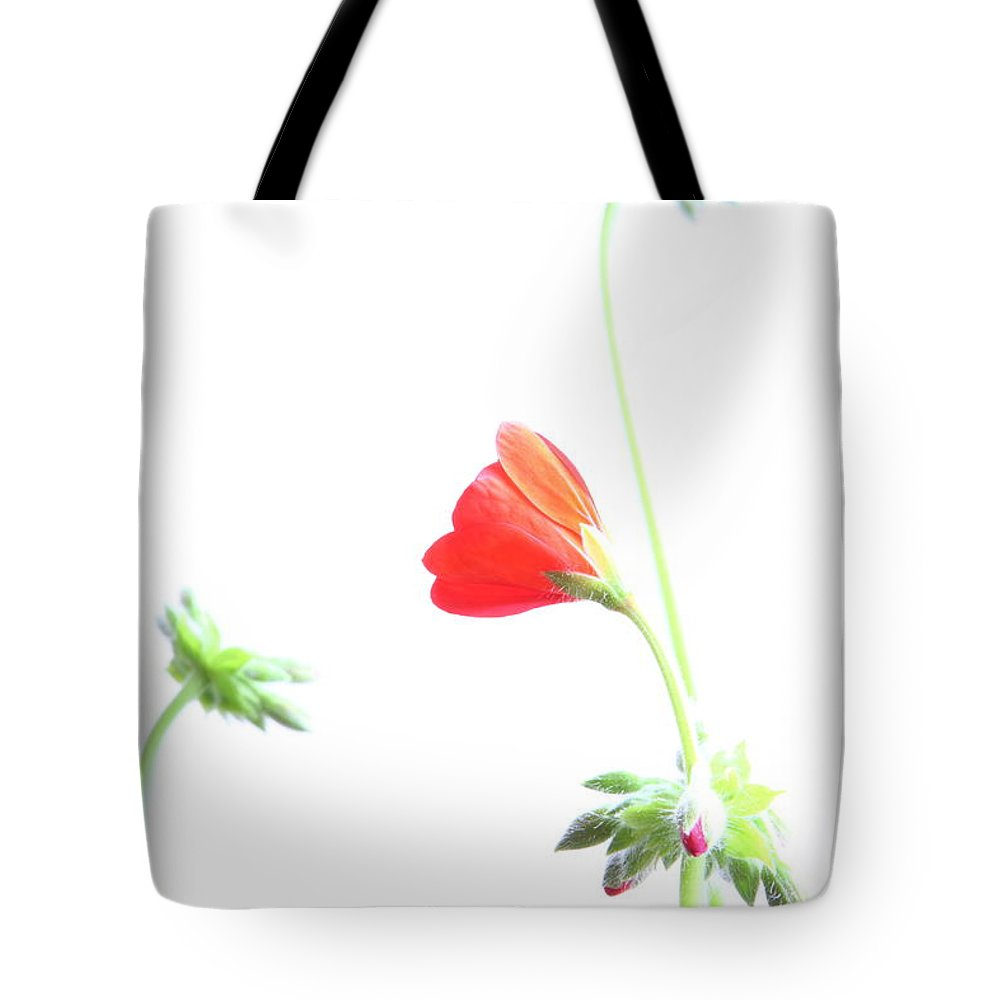 Geranium Tote Bag featuring the photograph Young Geranium Fine Art Photography Print by James BO Insogna