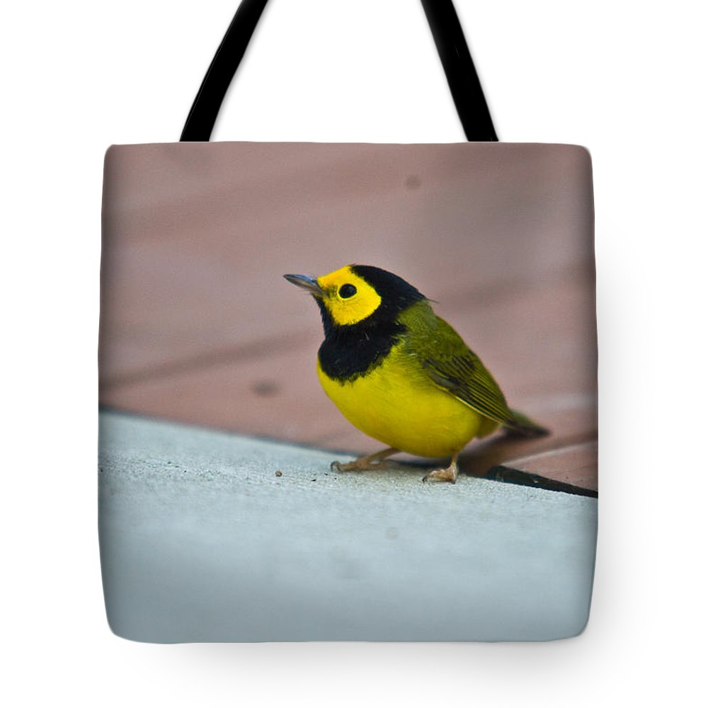 Cove Tote Bag featuring the photograph Young Male Hooded Warbler 1 by Douglas Barnett