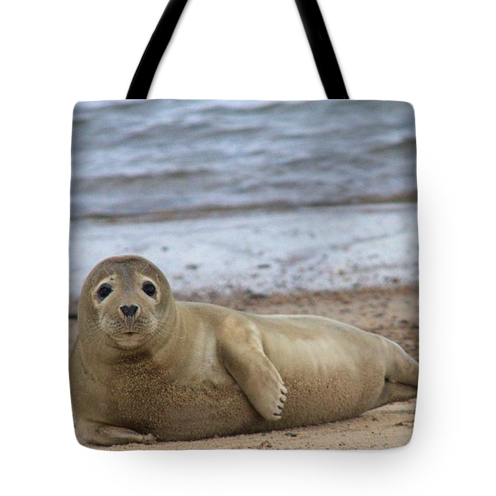 Seal Tote Bag featuring the photograph Young Seal Pup On Beach - Horsey, Norfolk, Uk by Gordon Auld